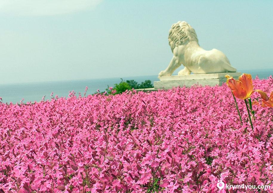 Алупка Крым фото
