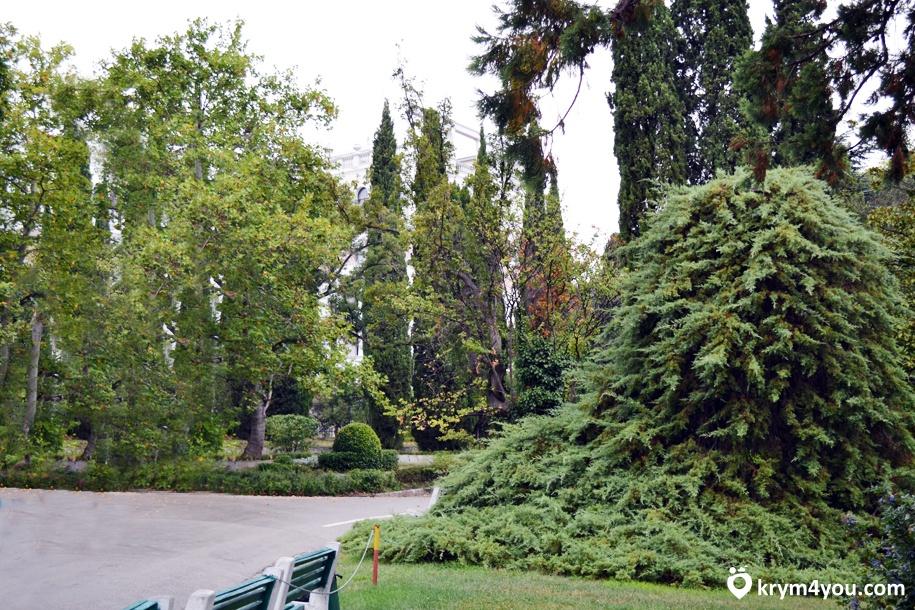 Ливадийский парк Крым фото 3