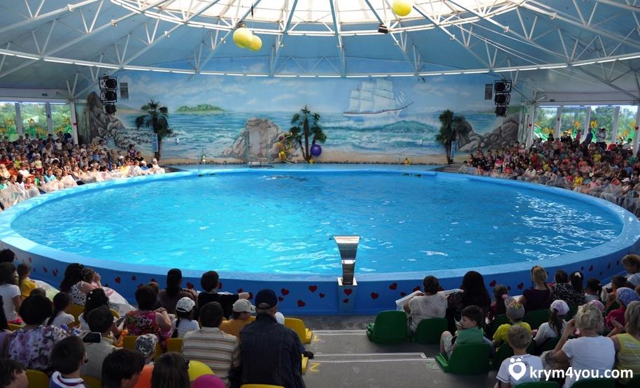Дельфинарий «Немо» в Судаке. Крым фото2