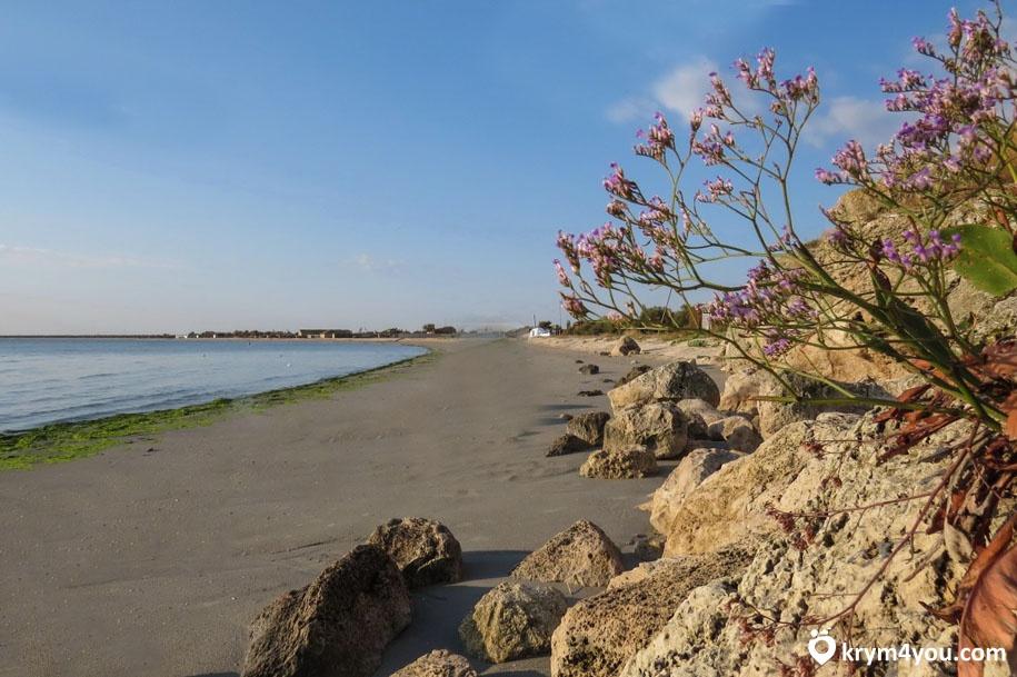 Новоотрадное Крым фото море