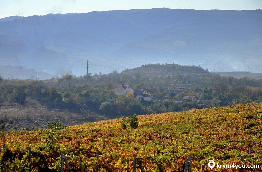 Завод шампанских вин «Золотая Балка» Крым фото 3