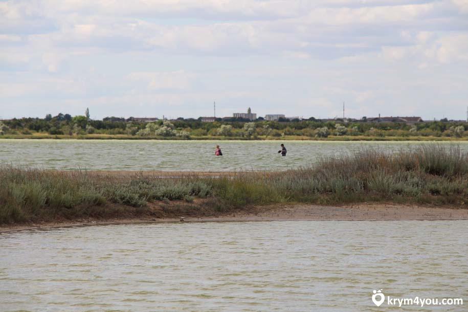 Майнаксое озеро Евпатория Крыма фото 2111