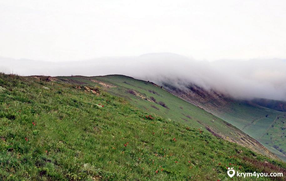 Крым Гора Клементьева