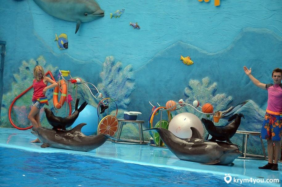 Дельфинарий в Алуште