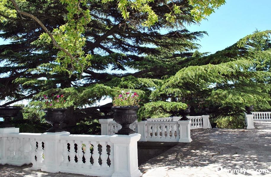 Форосский парк. Крым
