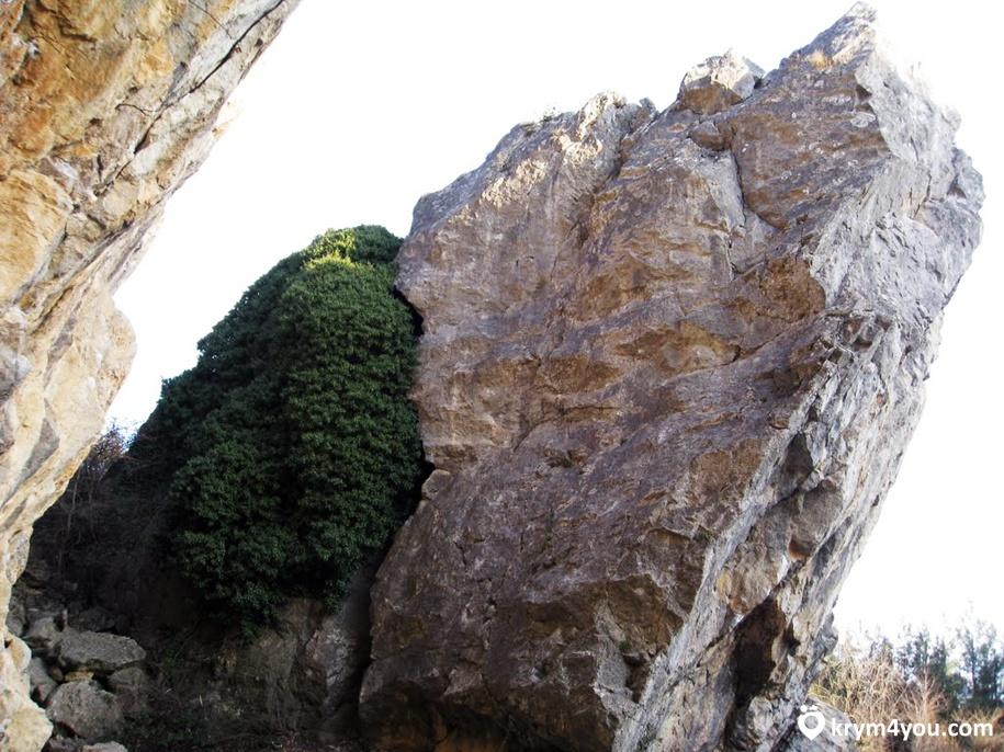 Крым фото Никитская расщелина