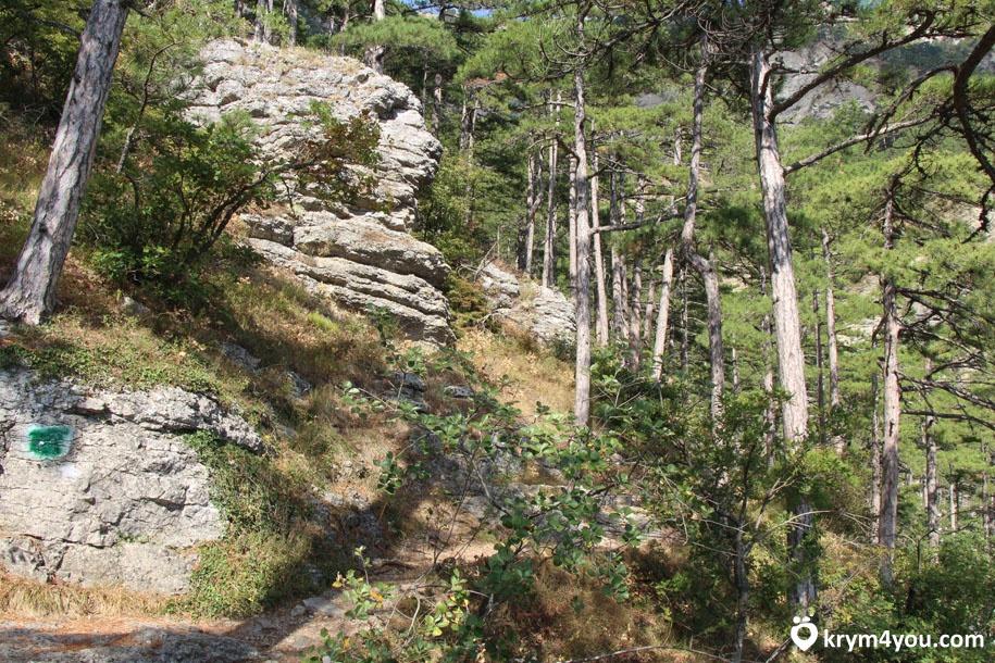 Гора Кошка 5