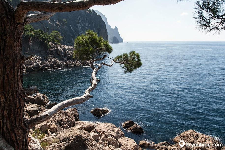 Крым Пляж Инжир в Балаклаве