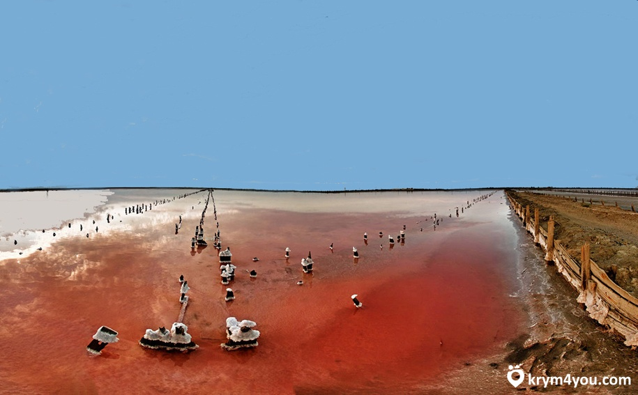 Озере Сасык-Сиваш Крым 3