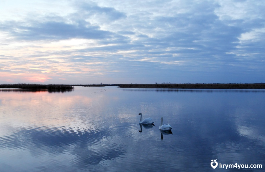 Крым Айгульское озеро