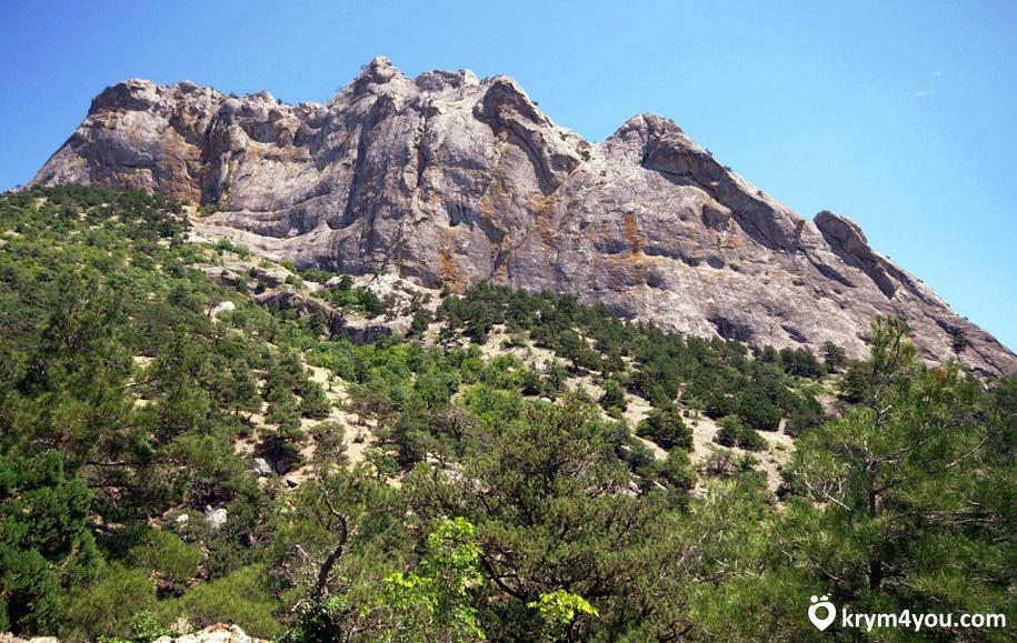 Гора Сокол Новый Свет фото