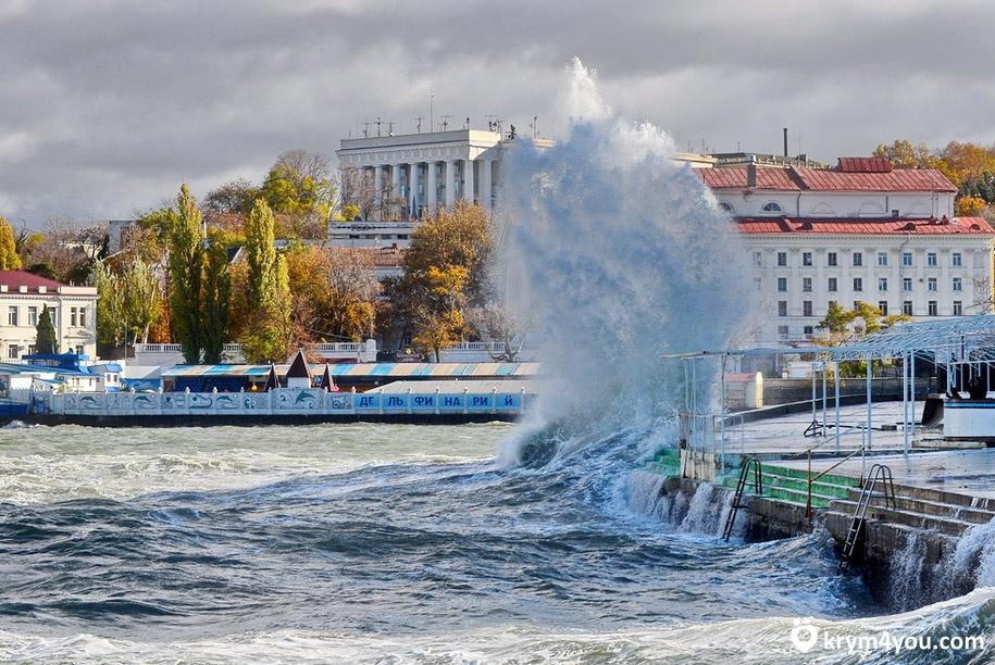 Севастопольский Дельфинарий 3