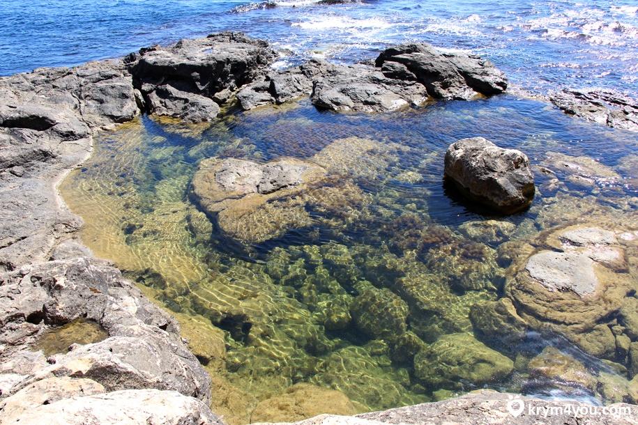 Где самое чистое море в Крыму 2