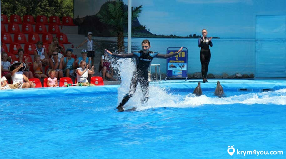 Дельфинарий Немо в Алуште